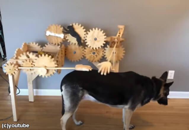 【レビュー】愛犬のために開発された「なでなでマシン」を実際使用してみた!