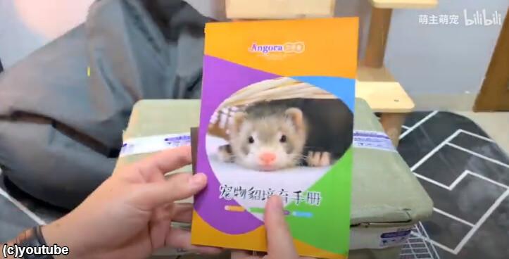 フェレットの飼育方法に関する冊子